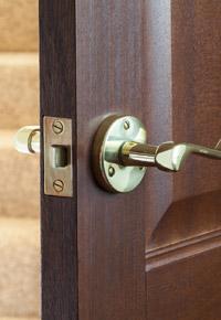 mahogany hardwood door