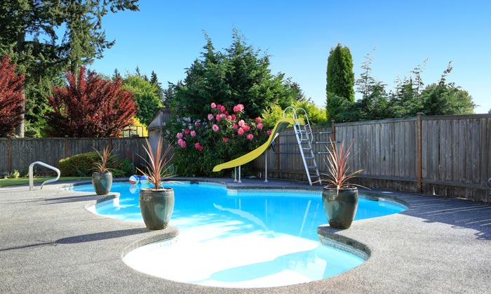 decorative plants and bushes around swimming pool
